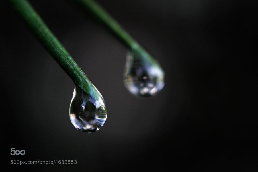 World in a drop by Wojciech Toman (WojciechToman)) on 500px.com
