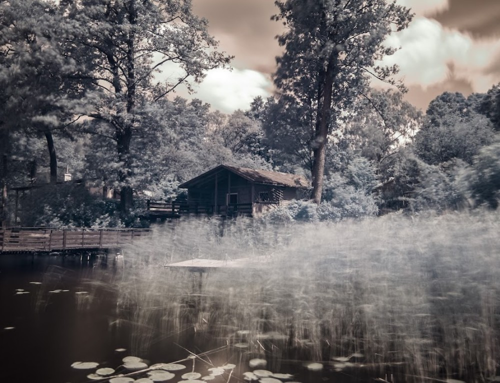 Another IR photo