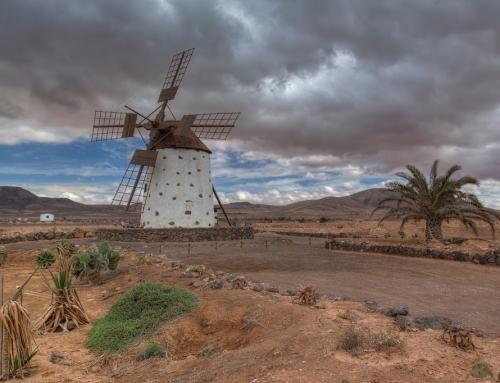 A lonely wind mill