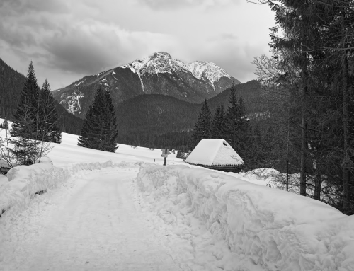 Black & white HDR from Tatra mountains