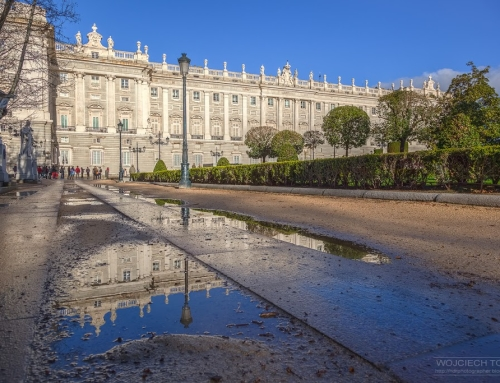 Palace reflected in a puddle
