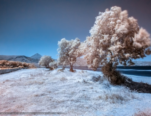 Post-processing infrared photos