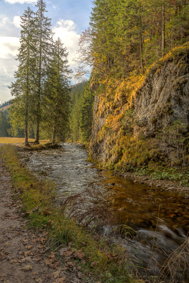 Stream in Koscieliska Valley