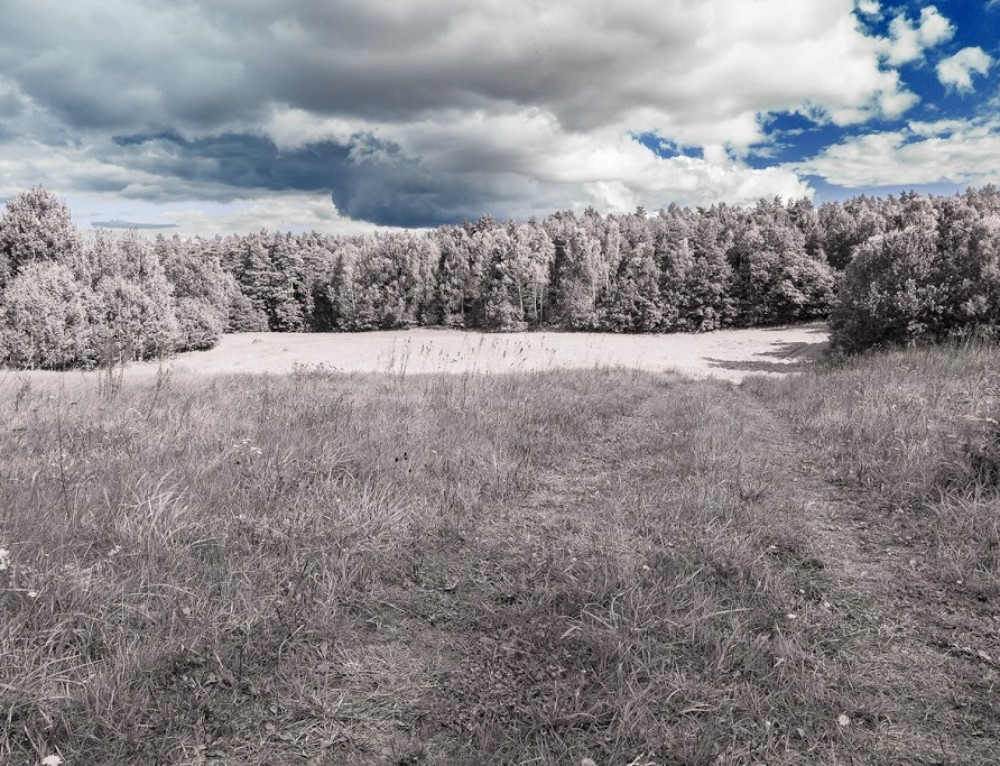 Tutorial: simulating infrared photography in Photoshop